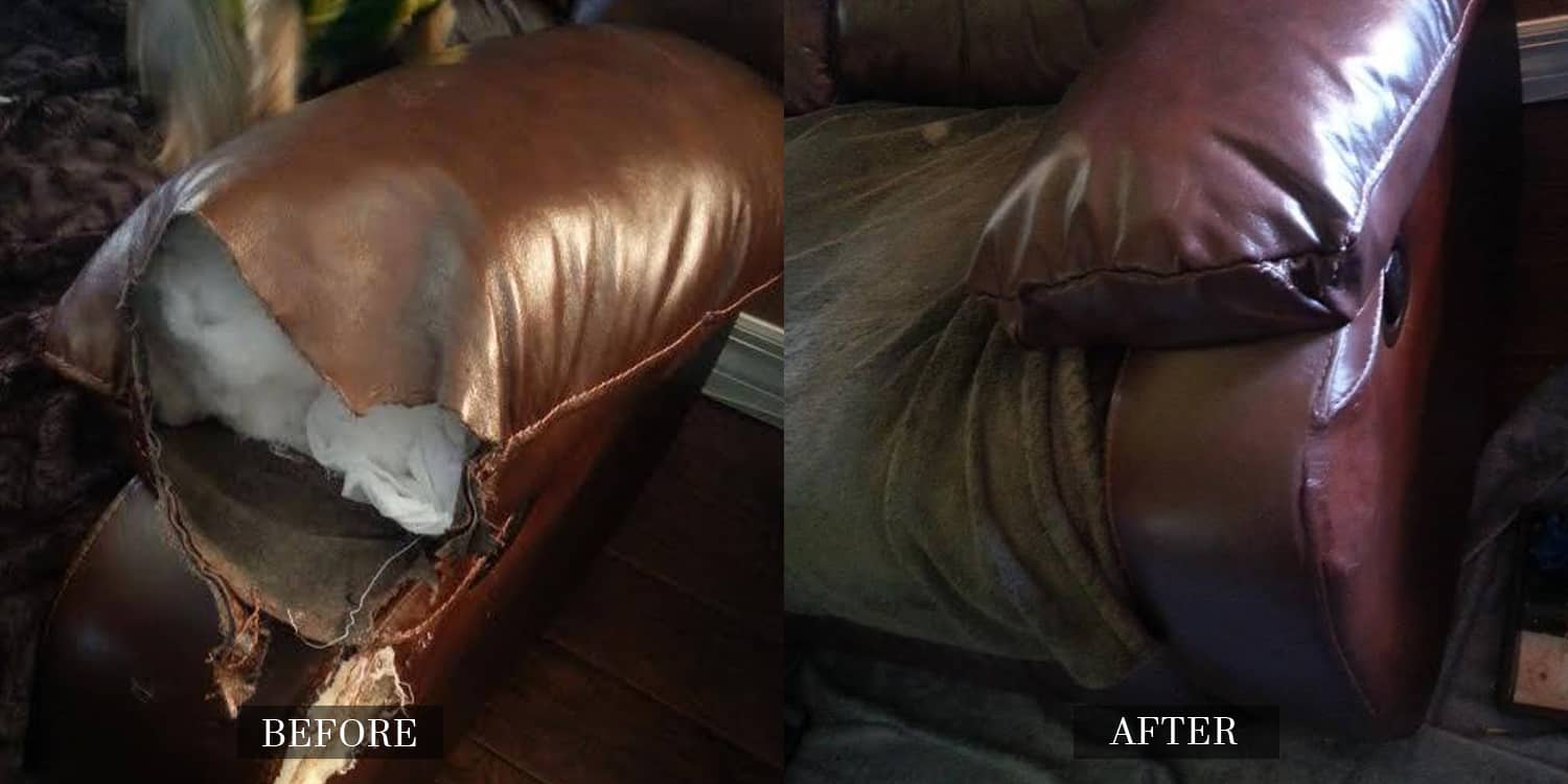Leather Repair for Pet Damage
